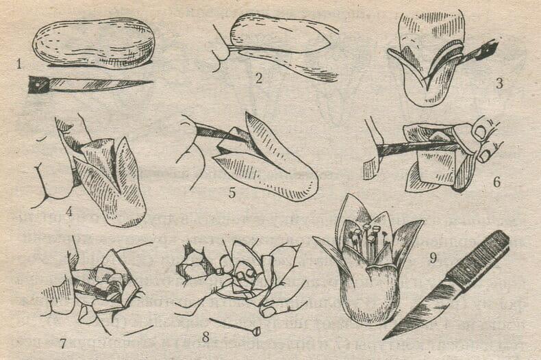 Виготовлення лілії з моркви, буряка або редьки