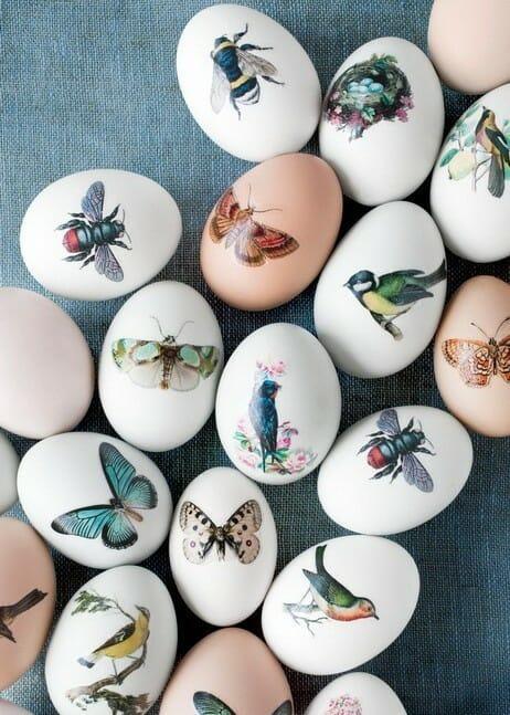 Як фарбувати яйця на Великдень: за допомогою перевідних татуювань