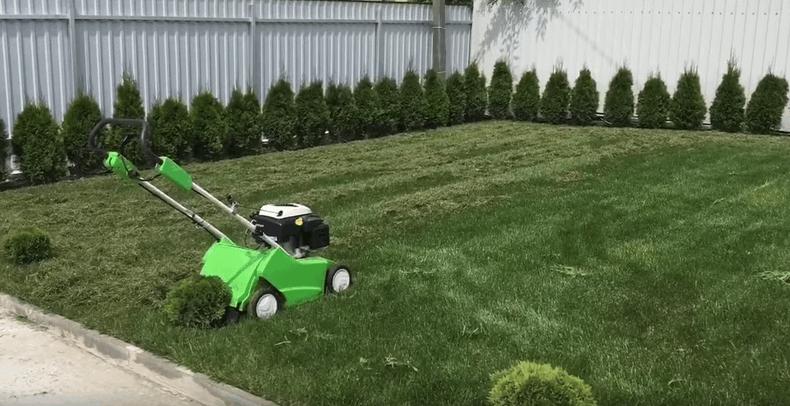 Догляд за газоном: стрижка