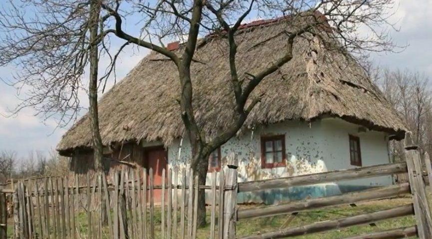 Таланти твої Україно 2: «Рідний край», «Роздум», «Земля»